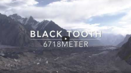Black Tooth